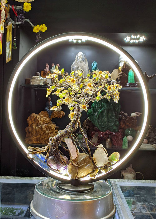 Tiểu cảnh bonsai trên đá led viền sáng cao cấp